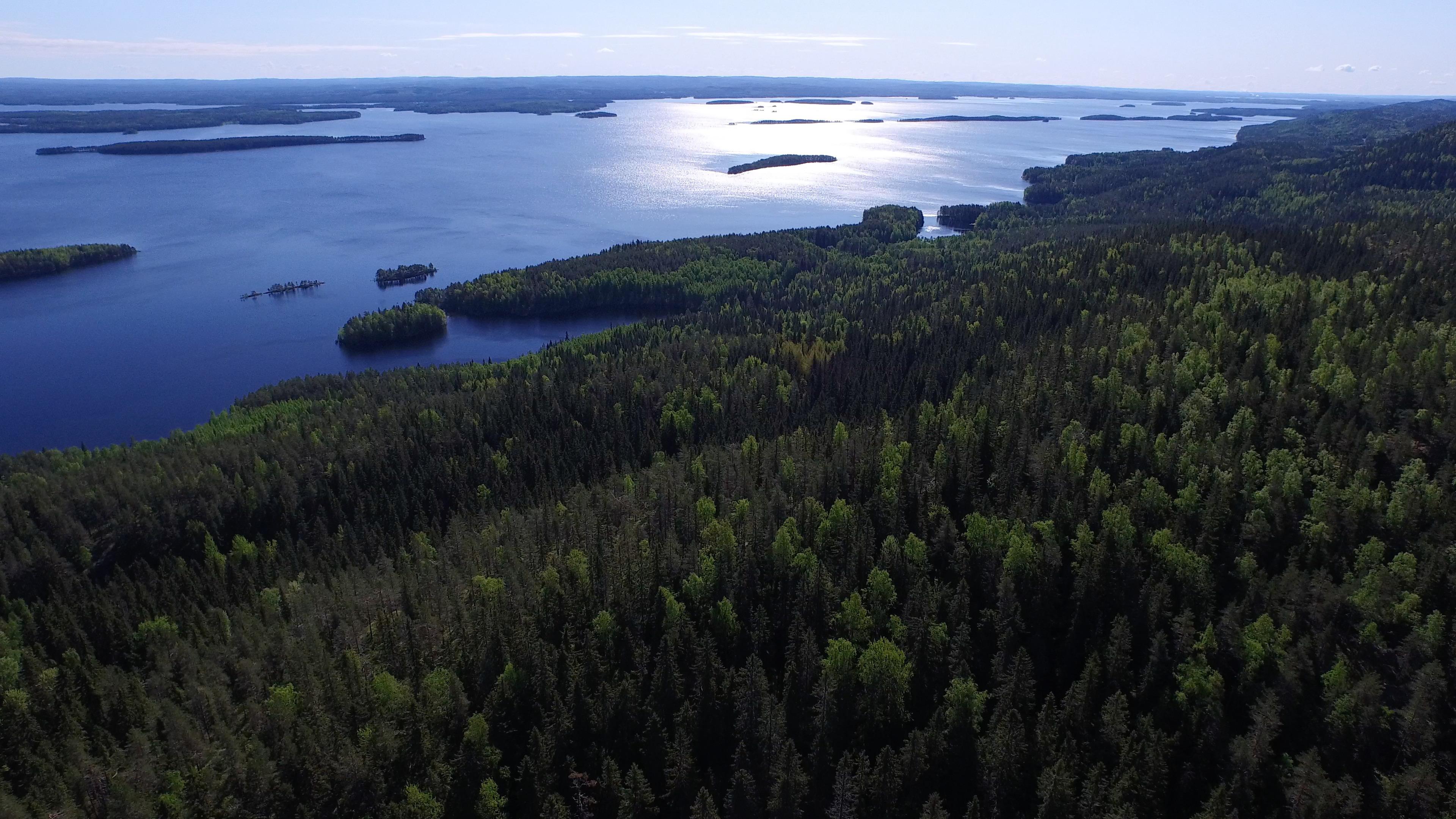 Metsä − elokuvakonsertti Kangasala-talossa.