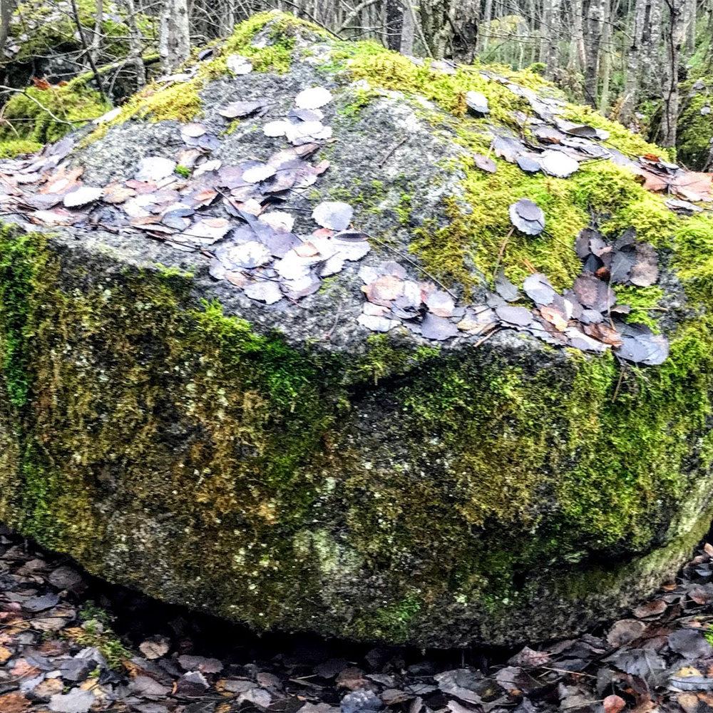 Ainoastaan myllynkivi on jäljellä ennen niin merkittävästä Sarsan myllykeskuksesta Kangasalla. Myllyjen toiminta päättyi vuonna1604 Sarsankosken yllättäen kadottua.